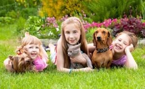 animalele de compania pentru copii